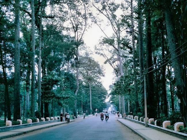 Những góc Sài Gòn xưa yên bình qua loạt ảnh màu Ảnh 3