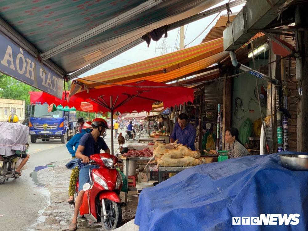 Chính quyền kêu gọi từ bỏ thói quen ăn thịt chó, chợ chó nổi tiếng TP.HCM vẫn 'hút' khách Ảnh 16