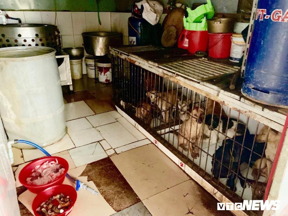 Chính quyền kêu gọi từ bỏ thói quen ăn thịt chó, chợ chó nổi tiếng TP.HCM vẫn 'hút' khách Ảnh 13