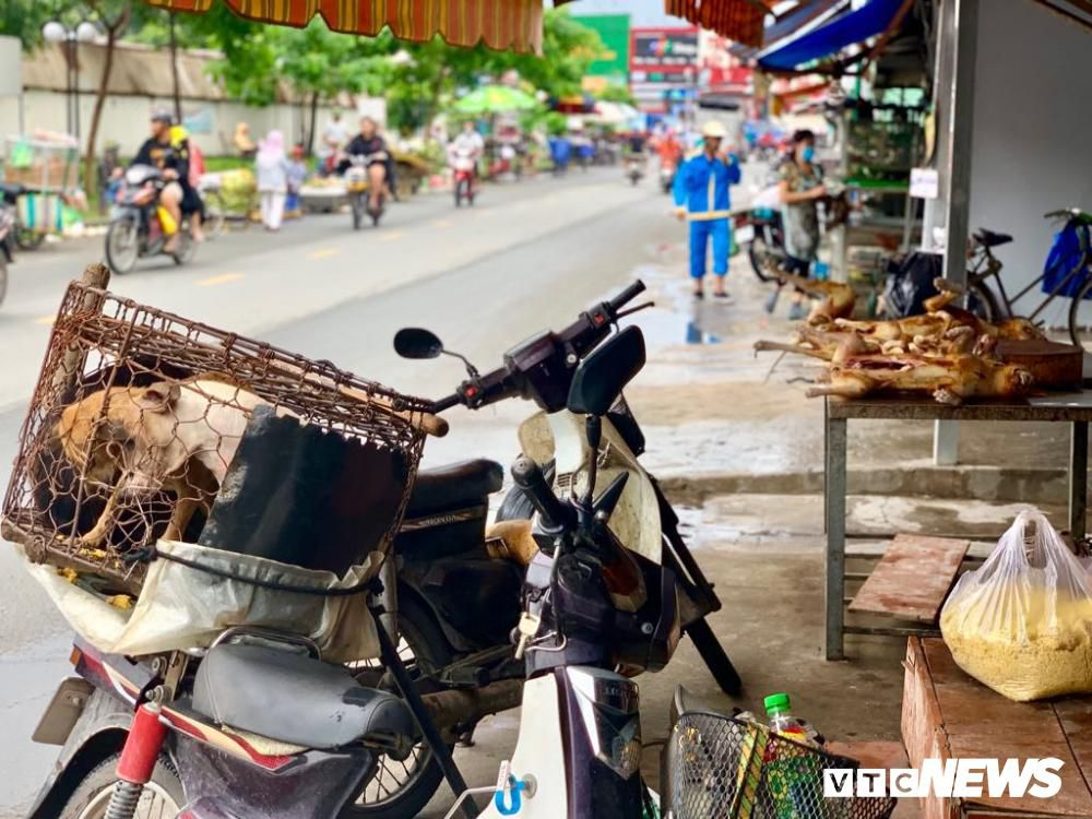 Chính quyền kêu gọi từ bỏ thói quen ăn thịt chó, chợ chó nổi tiếng TP.HCM vẫn 'hút' khách Ảnh 14