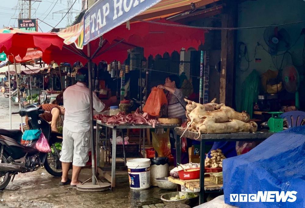 Chính quyền kêu gọi từ bỏ thói quen ăn thịt chó, chợ chó nổi tiếng TP.HCM vẫn 'hút' khách Ảnh 3