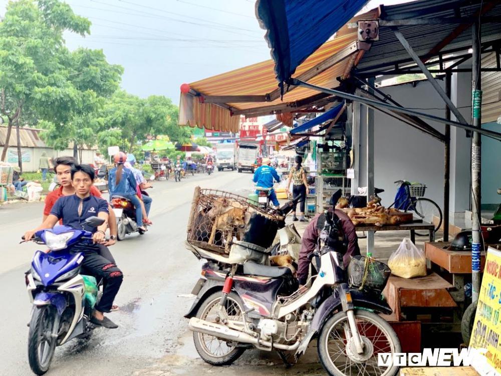 Chính quyền kêu gọi từ bỏ thói quen ăn thịt chó, chợ chó nổi tiếng TP.HCM vẫn 'hút' khách Ảnh 4