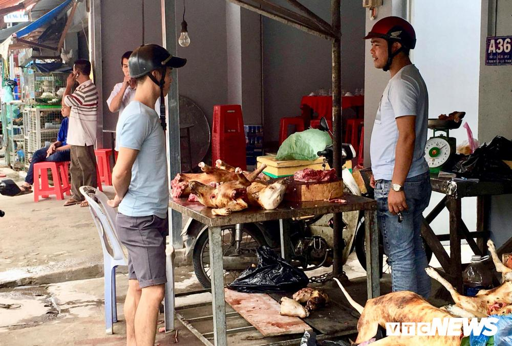 Chính quyền kêu gọi từ bỏ thói quen ăn thịt chó, chợ chó nổi tiếng TP.HCM vẫn 'hút' khách Ảnh 15