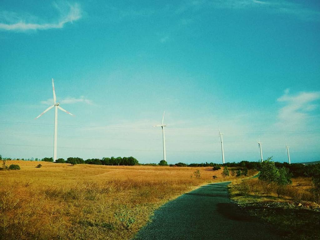 4 cánh đồng quạt gió ở Việt Nam được hội mê sống ảo săn lùng Ảnh 6