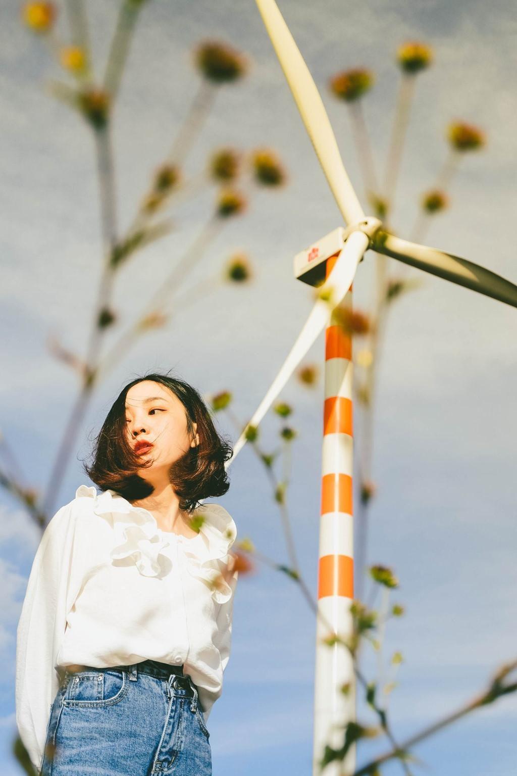 4 cánh đồng quạt gió ở Việt Nam được hội mê sống ảo săn lùng Ảnh 7