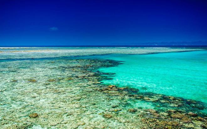 Hòn đảo duy nhất của Việt Nam bất ngờ lọt top những nơi có làn nước trong xanh nhất thế giới, bạn đã đi chưa? Ảnh 22