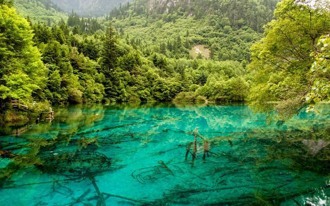 Hòn đảo duy nhất của Việt Nam bất ngờ lọt top những nơi có làn nước trong xanh nhất thế giới, bạn đã đi chưa? Ảnh 25