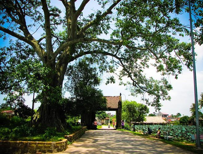 Những địa điểm vui chơi quanh Hà Nội cho ngày Phụ nữ Việt Nam 20-10 Ảnh 15