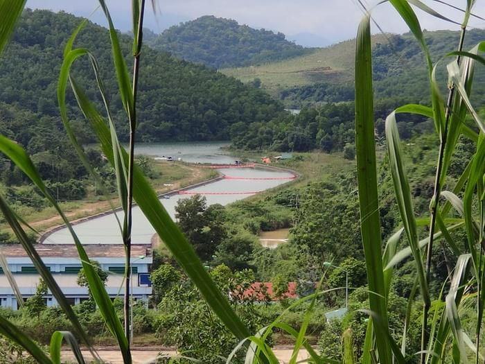 Hai nghi phạm khai lái xe tải chở 10m3 chất dầu thải đổ trộm gây ô nhiễm nguồn nước sông Đà Ảnh 5