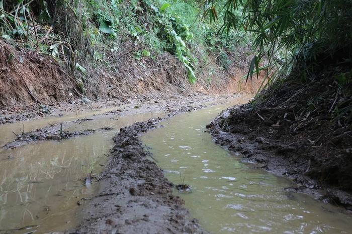Kẻ chủ mưu khai được thuê 7 triệu đồng chở chất thải từ Hưng Yên lên Hòa Bình xả gây ô nhiễm nước Sông Đà Ảnh 2