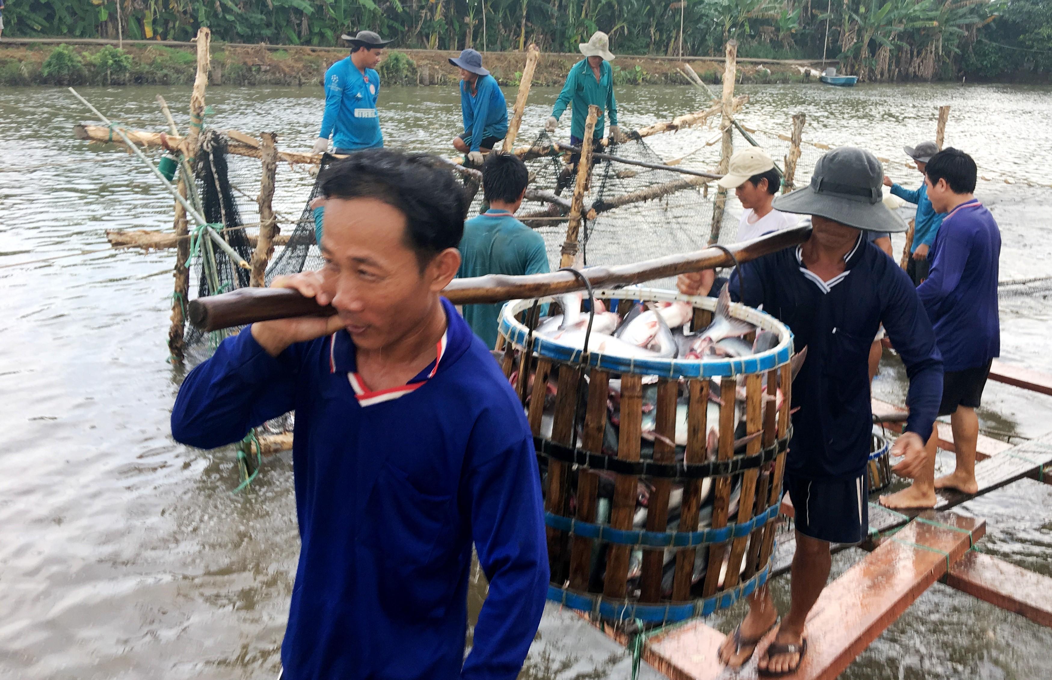 Mỹ tiếp tục là thị trường xuất khẩu thủy sản lớn nhất của Việt Nam Ảnh 1