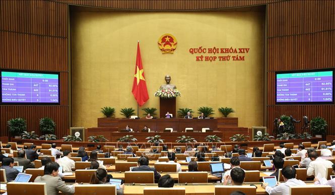 Tiến hành quy trình bầu Chủ nhiệm Ủy ban Pháp luật của Quốc hội Ảnh 1