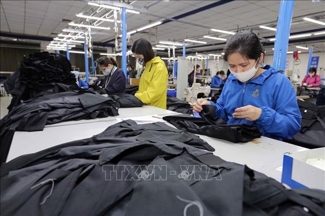 Đơn hàng của nhiều doanh nghiệp dệt may sụt giảm Ảnh 1