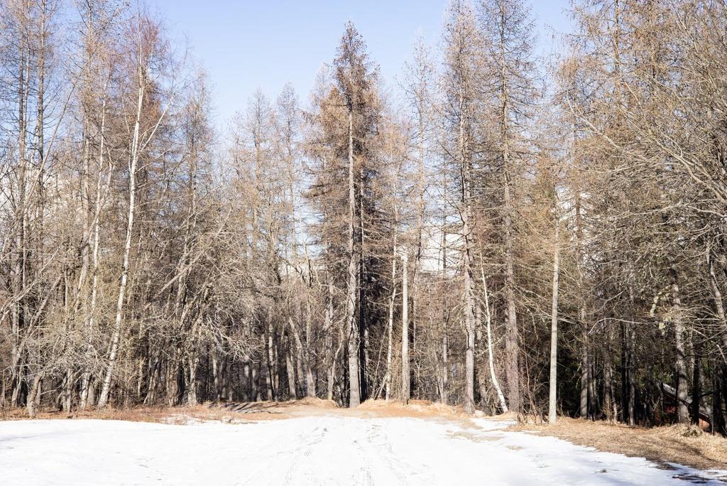 Khu trượt tuyết trên dãy Alps biến thành 'làng ma' vì biến đổi khí hậu Ảnh 9