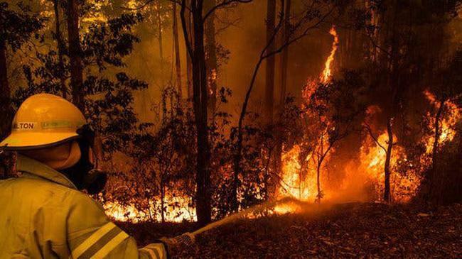 Thảm họa cháy rừng khiến kinh tế Australia lao đao Ảnh 1
