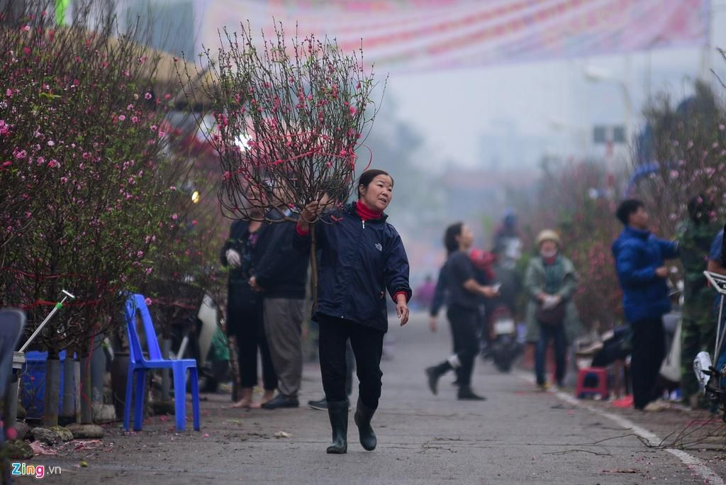 Đào bung nở ở chợ hoa lớn nhất Thủ đô Ảnh 5