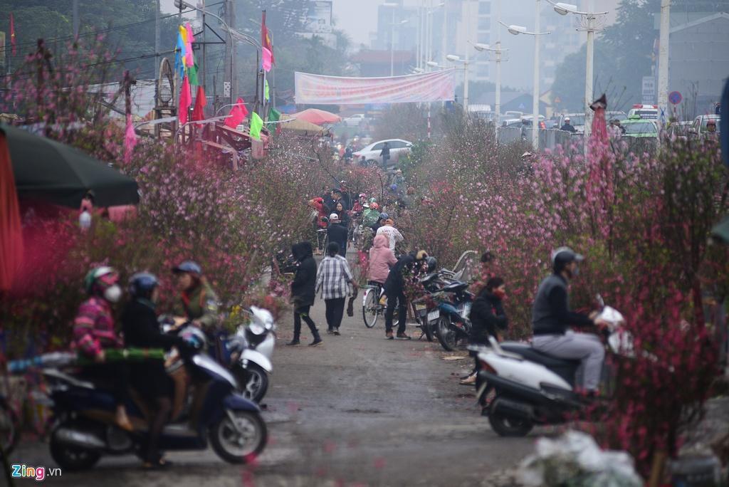Đào bung nở ở chợ hoa lớn nhất Thủ đô Ảnh 1