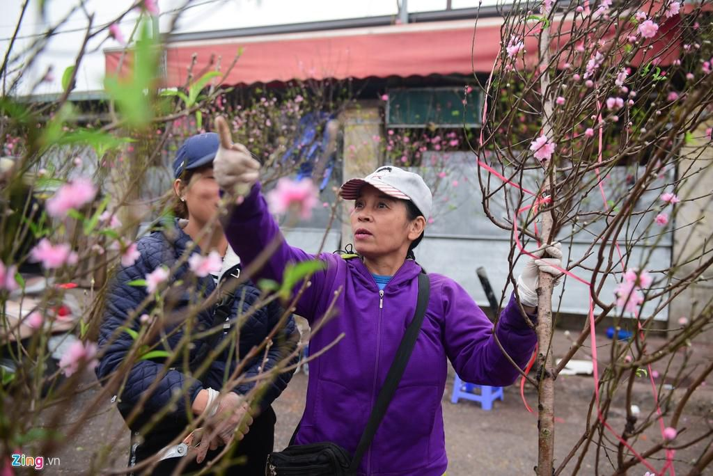 Đào bung nở ở chợ hoa lớn nhất Thủ đô Ảnh 4