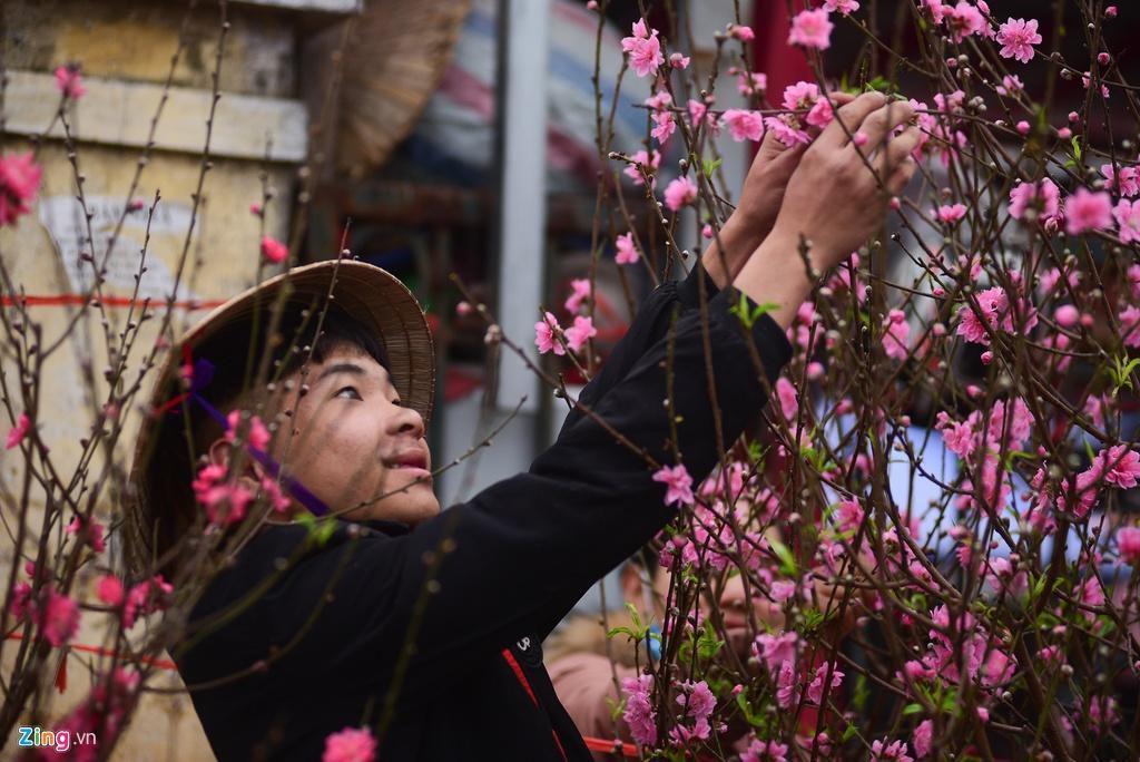 Đào bung nở ở chợ hoa lớn nhất Thủ đô Ảnh 6