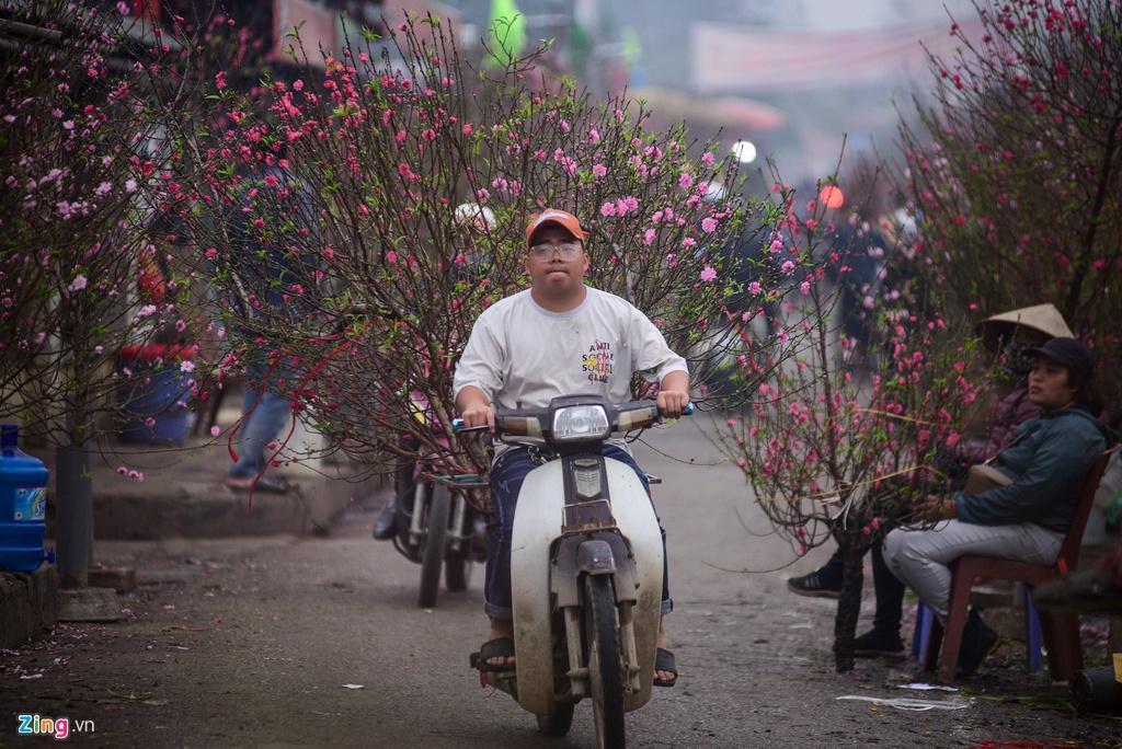 Đào bung nở ở chợ hoa lớn nhất Thủ đô Ảnh 7