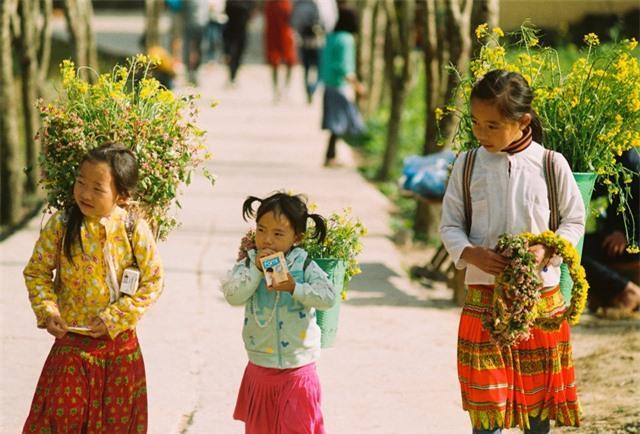 Sắc vàng hoa cải sưởi ấm Hà Giang ngày đông Ảnh 10
