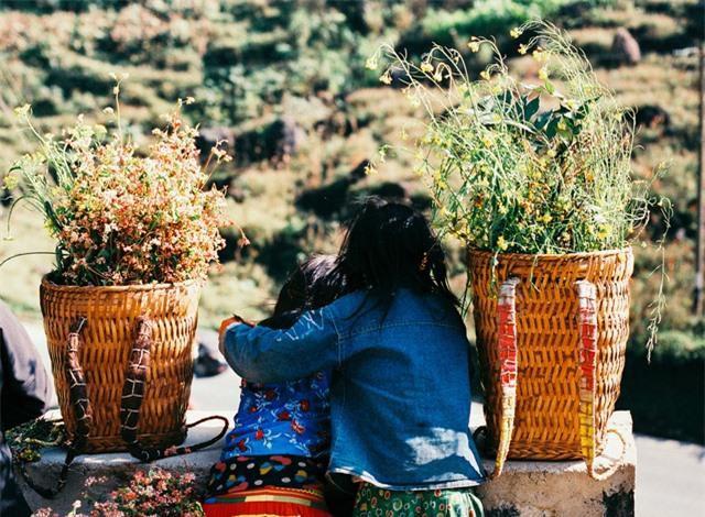 Sắc vàng hoa cải sưởi ấm Hà Giang ngày đông Ảnh 12