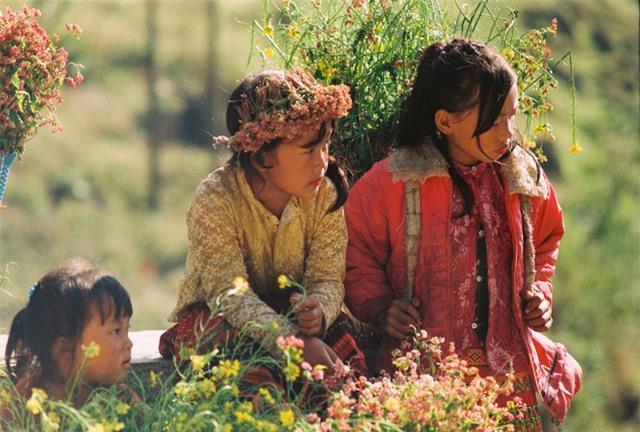 Sắc vàng hoa cải sưởi ấm Hà Giang ngày đông Ảnh 9