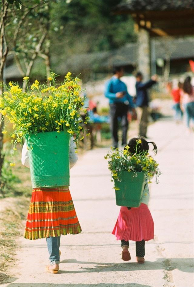 Sắc vàng hoa cải sưởi ấm Hà Giang ngày đông Ảnh 13