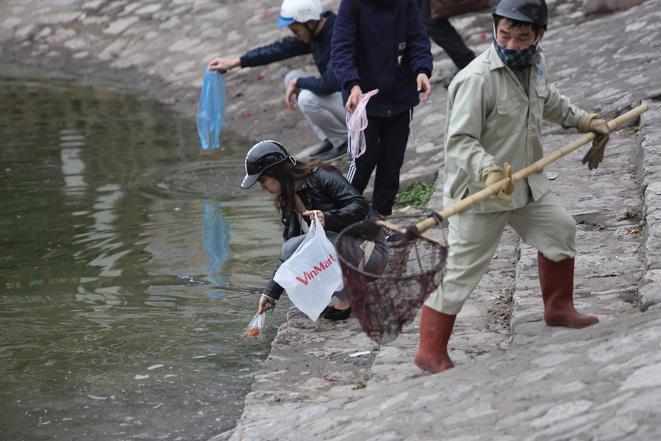 Cá chép ông Công, ông Táo ngắc ngoải vì tro, chân hương bị người dân thiếu ý thức thả xuống hồ Ảnh 7
