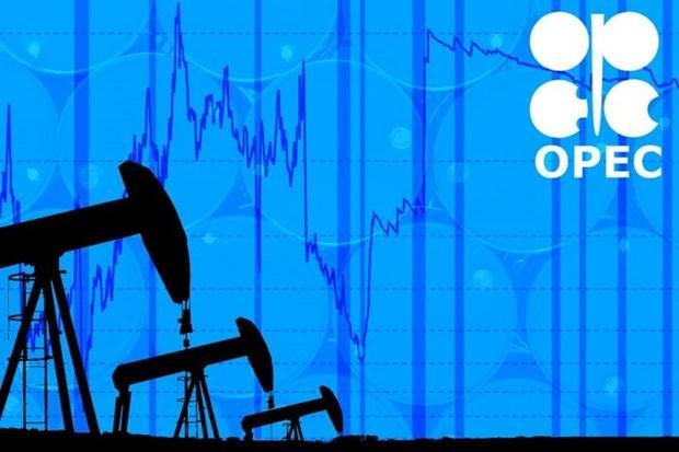 OPEC+ có thể tiếp tục cắt giảm sản lượng khai thác đến hết năm nay Ảnh 1