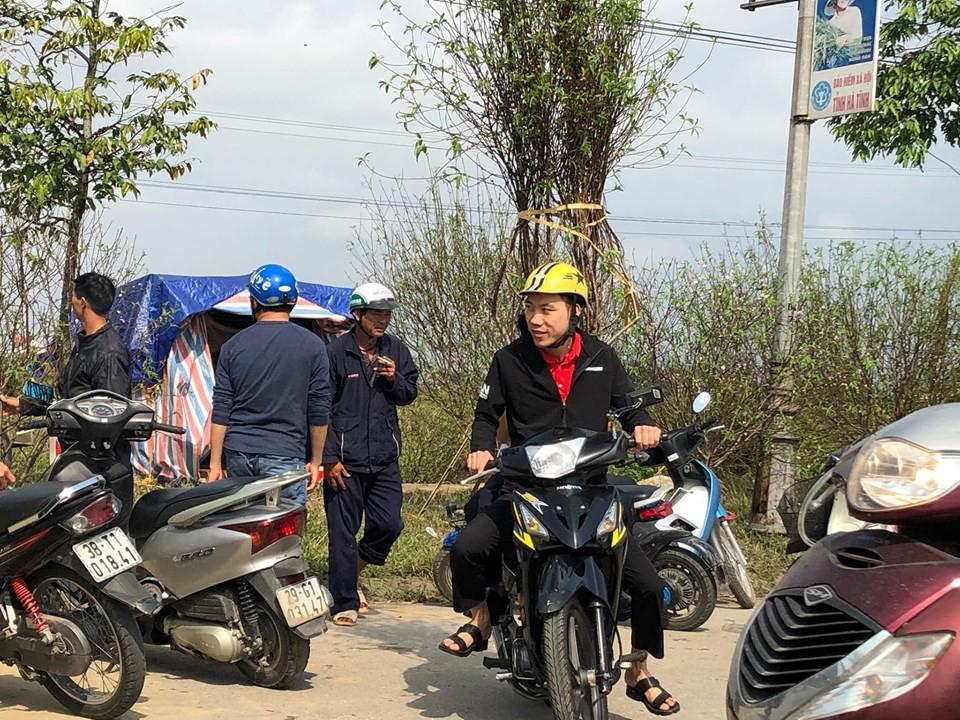 Bưởi diễn Hà Nội về chợ quê miền Trung giá gần 20 triệu đồng/cây hút khách Ảnh 2