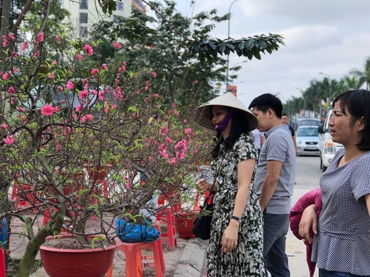 Bưởi diễn Hà Nội về chợ quê miền Trung giá gần 20 triệu đồng/cây hút khách Ảnh 4