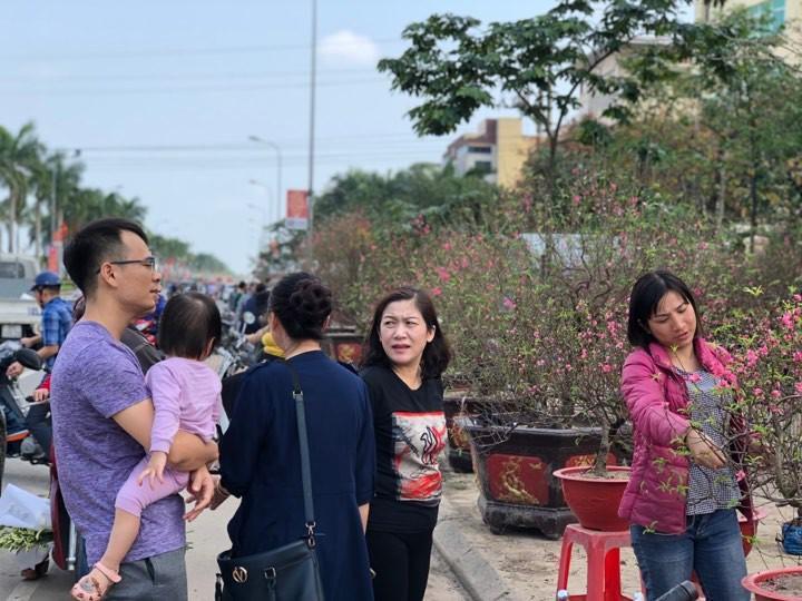 Bưởi diễn Hà Nội về chợ quê miền Trung giá gần 20 triệu đồng/cây hút khách Ảnh 5