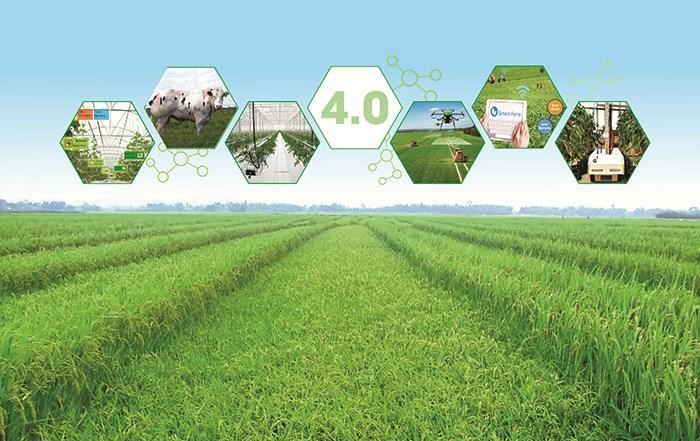 Mô hình tích hợp giải thích ý định cấp tín dụng cho sản xuất nông nghiệp ứng dụng công nghệ cao Ảnh 1