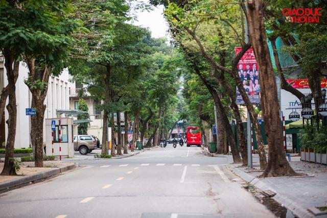 Đường phố Hà Nội sạch ' không tì vết' dịp Tết Nguyên Đán Ảnh 11
