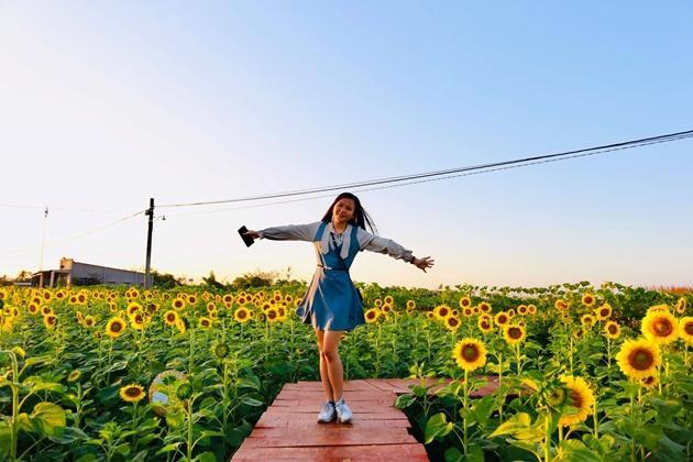 Check-in vườn hoa hướng dương rực rỡ ở Đồng Nai ngày đầu năm mới 2020 Ảnh 7