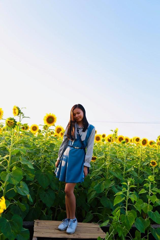 Check-in vườn hoa hướng dương rực rỡ ở Đồng Nai ngày đầu năm mới 2020 Ảnh 12