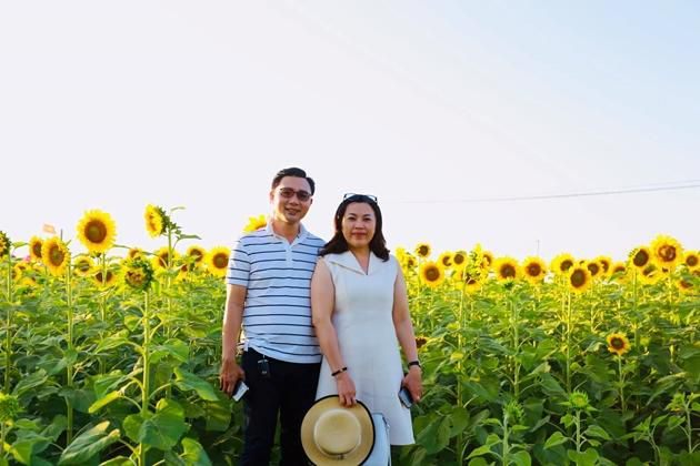 Check-in vườn hoa hướng dương rực rỡ ở Đồng Nai ngày đầu năm mới 2020 Ảnh 3