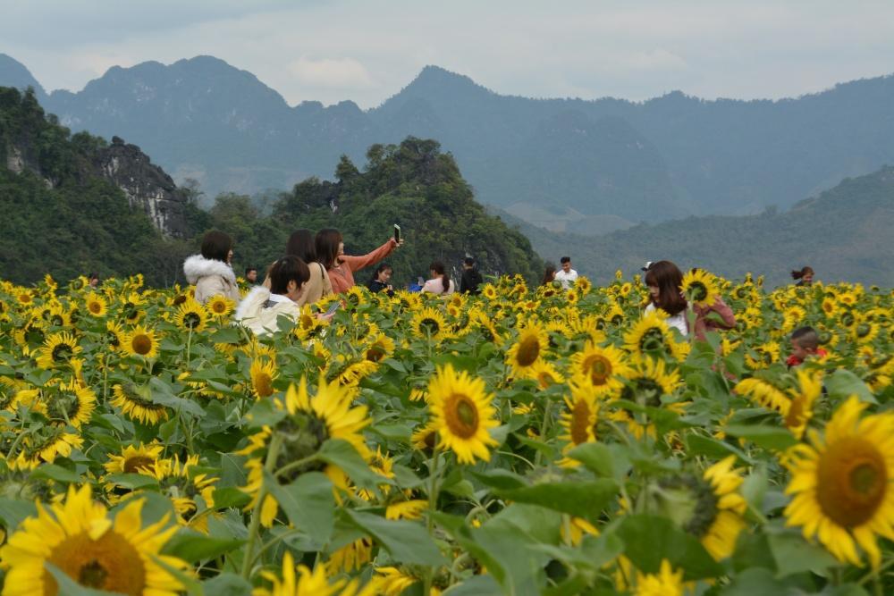 Hàng ngàn người đổ về bình nguyên xanh Khai Trung du xuân Ảnh 7