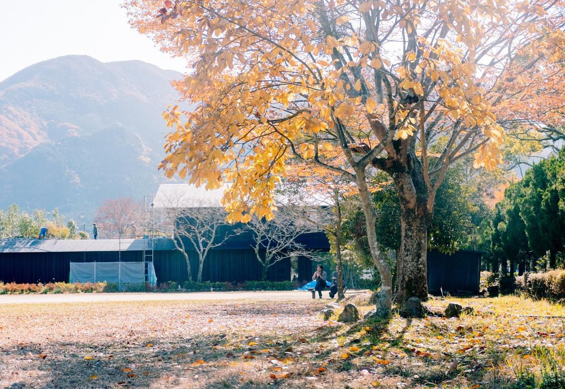Nhật Bản - thiên đường của nhiếp ảnh đường phố Ảnh 23