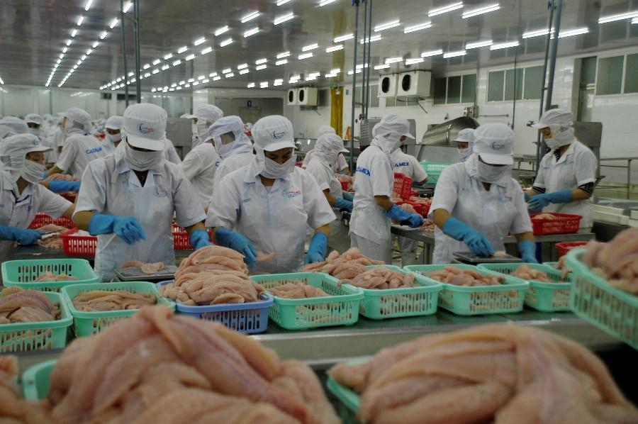 Thanh tra Bộ Nông nghiệp Mỹ đánh giá an toàn thực phẩm với cá tra Việt Nam Ảnh 1