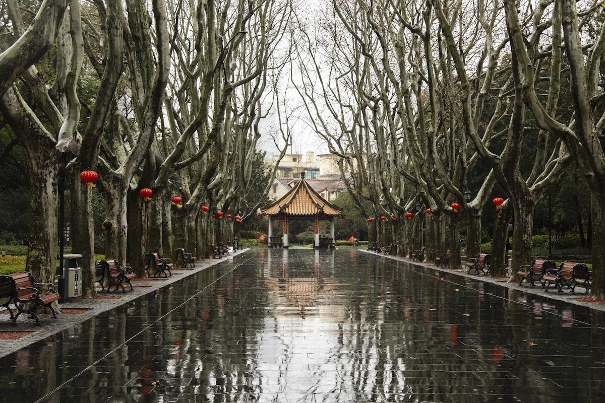 Thành phố Thượng Hải ' không bao giờ ngủ' bỗng thành 'thị trấn ma' giữa đại dịch virus corona Ảnh 15