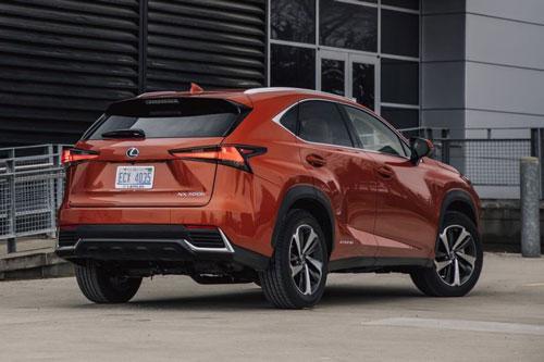 Lexus NX 300h 2020: Công suất 194 mã lực, giá hơn 900 triệu đồng Ảnh 2