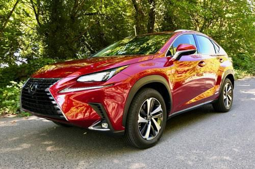Lexus NX 300h 2020: Công suất 194 mã lực, giá hơn 900 triệu đồng Ảnh 1