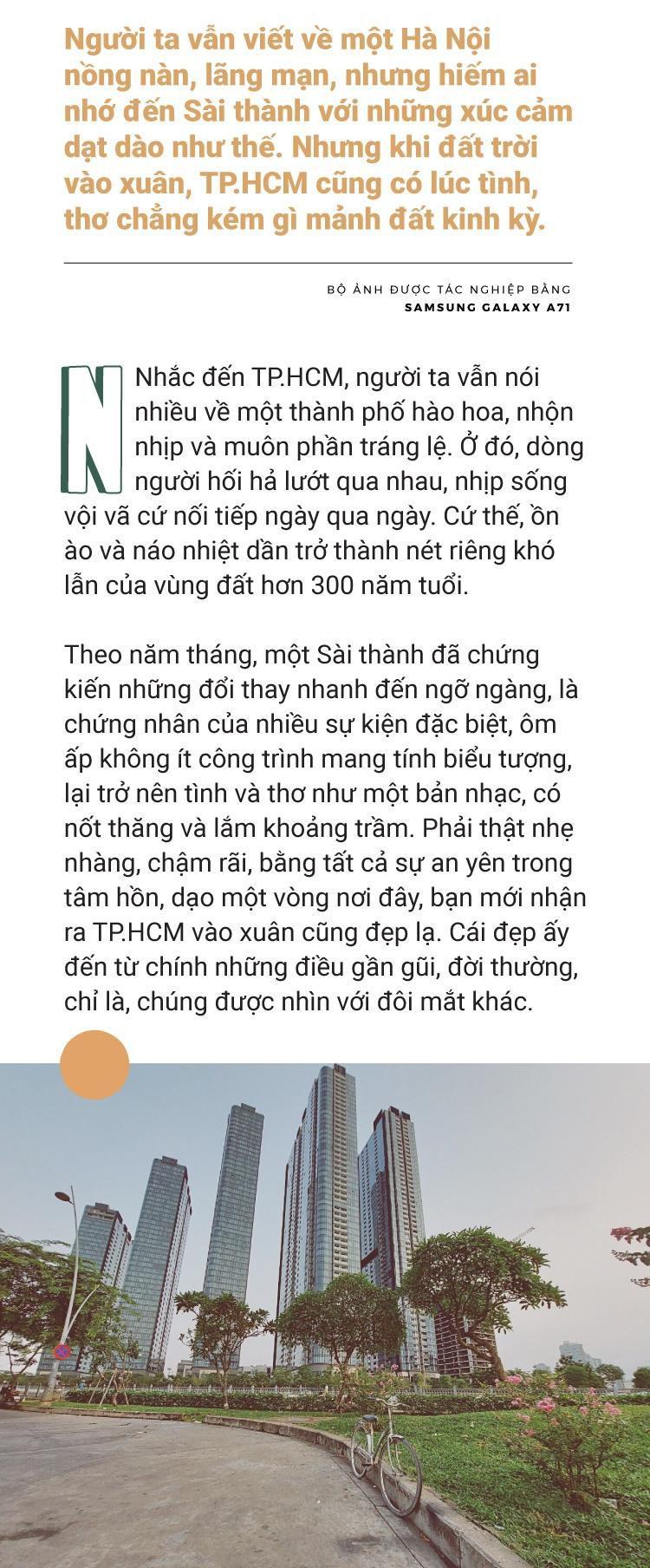 Đâu chỉ Hà Nội, TP.HCM vào xuân cũng tình và thơ như thế Ảnh 2