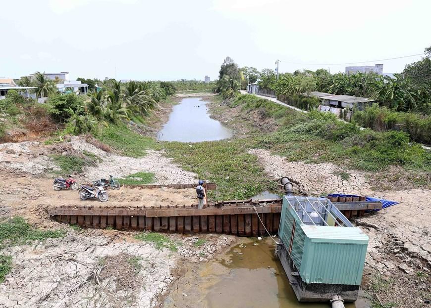 Hình ảnh kênh mương nứt nẻ, cây trồng khô héo ở Tiền Giang Ảnh 3