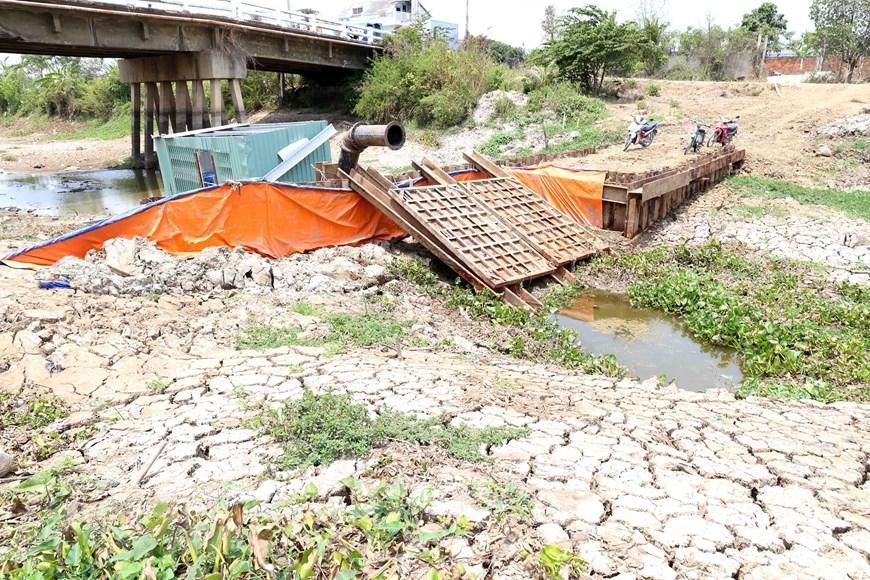 Hình ảnh kênh mương nứt nẻ, cây trồng khô héo ở Tiền Giang Ảnh 11