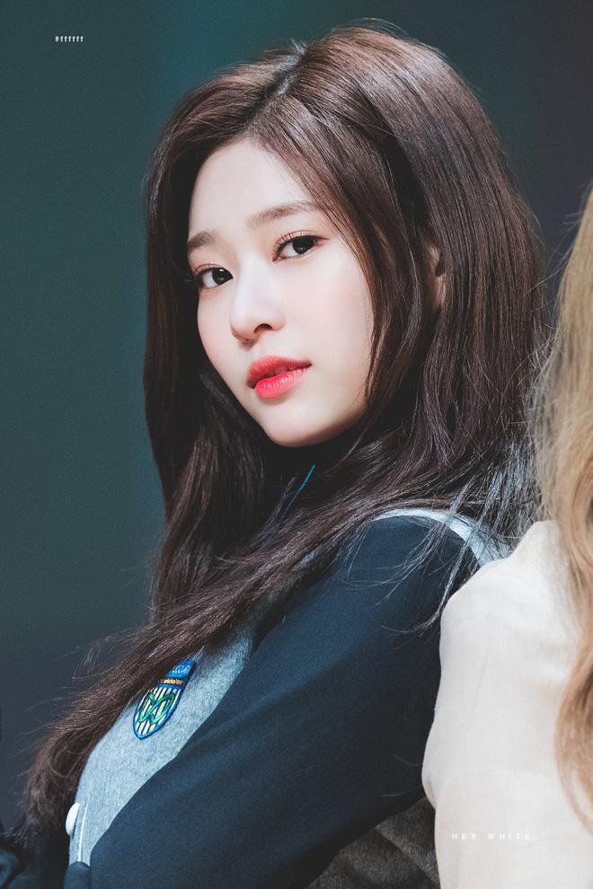 Netizen xôn xao đối thủ nhan sắc của 2 nữ thần Kpop Irene, Tzuyu: Không phải mỹ nhân BLACKPINK mà lại là tân binh? Ảnh 4