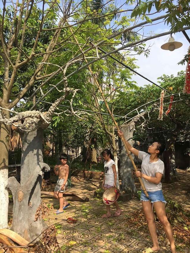 Nhà vườn 10.000m2 của nghệ sĩ Giang còi ngập hoa và trái cây Ảnh 24