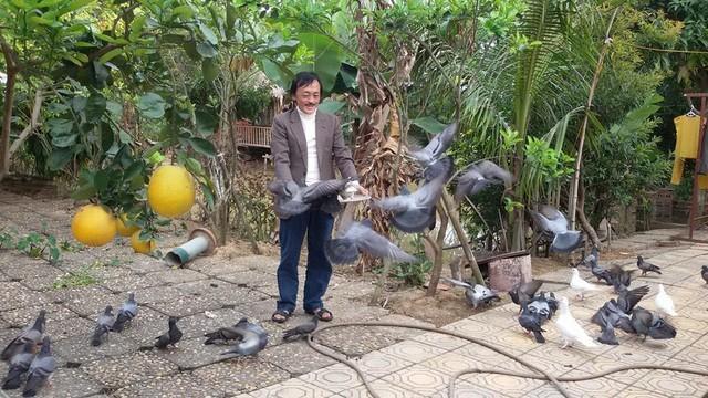 Nhà vườn 10.000m2 của nghệ sĩ Giang còi ngập hoa và trái cây Ảnh 11